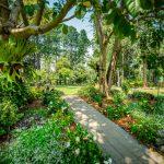 Pleasant garden view